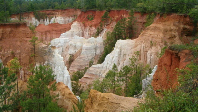 Top 5 Cool Hiking Locations for Families with Kids