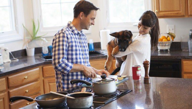 Best Dog Food For Your Dog – What You Need To Know